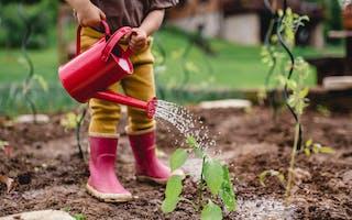 Barn med røde støvler vanner plante