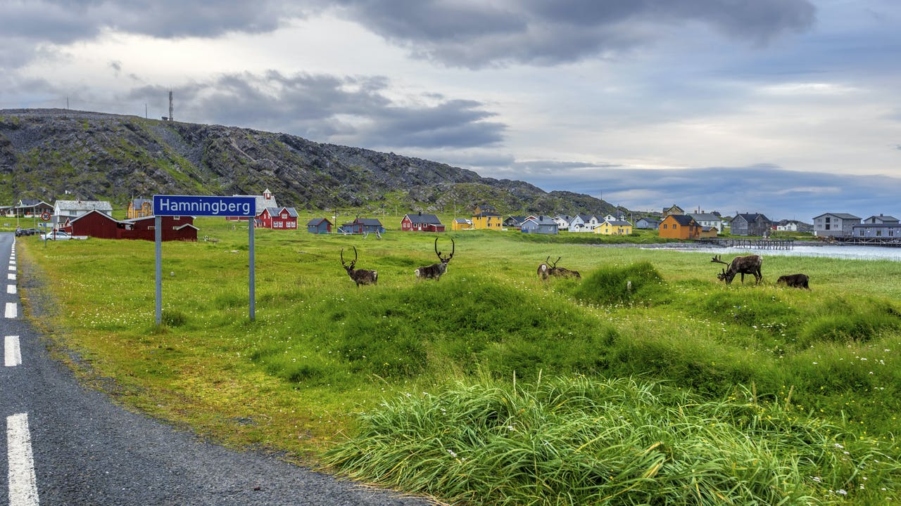 Varanger - opplev Norges nordligste nasjonale turistveg
