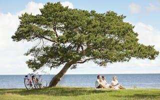 Tips til sykkelferie på Gotland