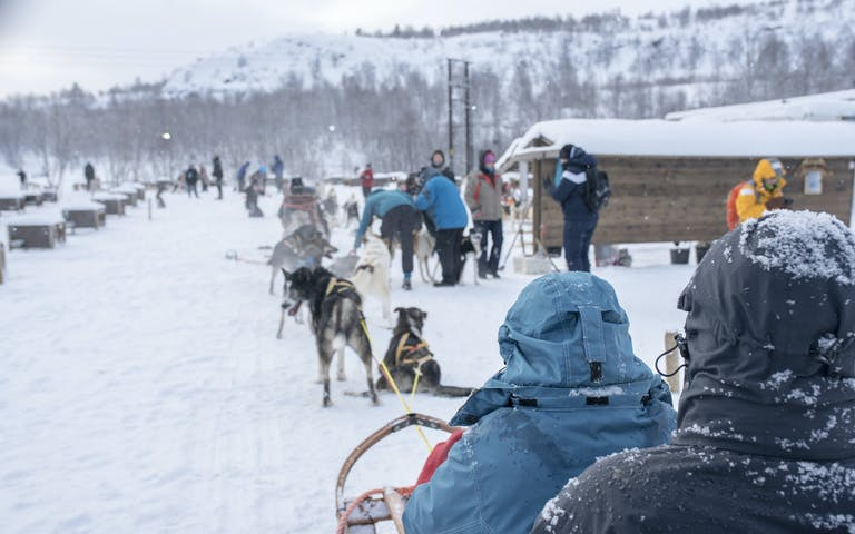 Klar for hundekjøring i Kirkenes - Foto: Getty Images