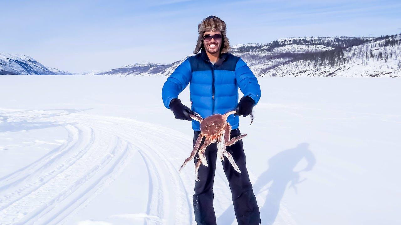 Opplev krabbesafari i Kirkenes, Finnmark