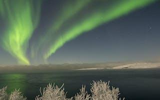 Opplev nordlyset i Kirkenes, Finnmark