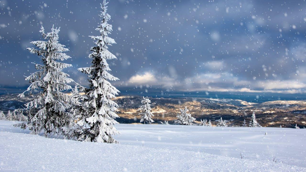 Lifjell - tips til skiferie og fjellturer