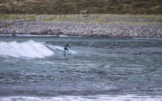 Lofoten – strender og surfing
