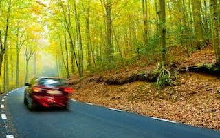 Rød bil kjører på landevei, det er høstfarger på trærne