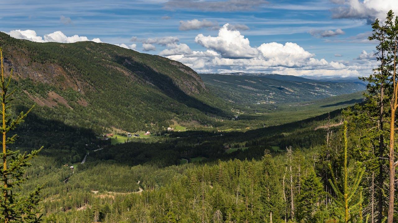 Reisetips til aktiv ferie i Nore og Uvdal