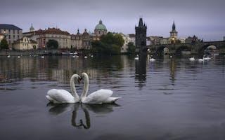 Kjærestetur i Praha – spa, mat og vin