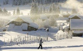 Skiferie på Sjusjøen – opplev ekte vintereventyr