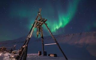 Opplev nordlyset på Svalbard