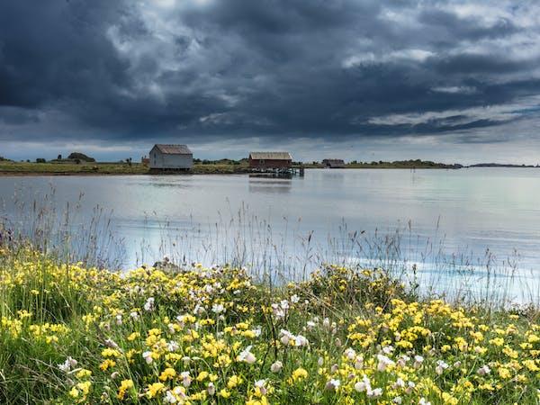Sommer i Vesterålen - Foto: Getty Images