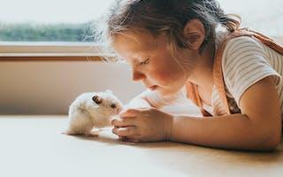 Viktig å vite før du skaffer deg et dyr
